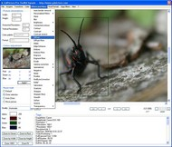GdPicture Light Imaging SDK - Site License screenshot